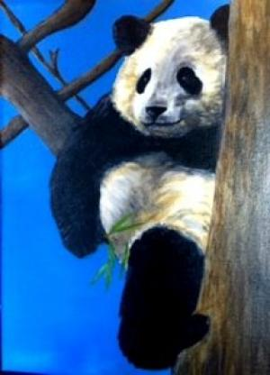 panda-on-the-tree