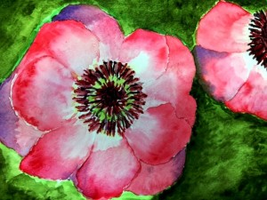 watercolor class poppies 2